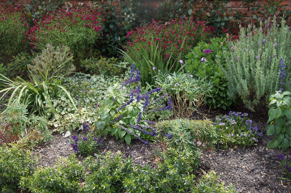 Commercial garden maintenance max scott grounds maintenance for Gardening and maintenance
