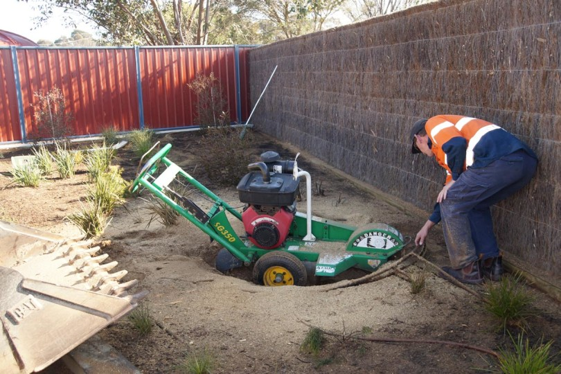 Tree Maintenance Services Geelong