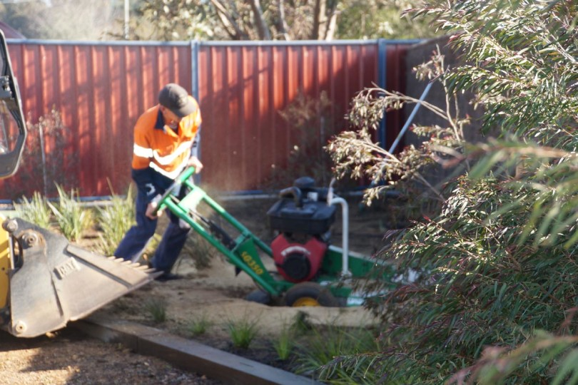 Geelong Tree Maintenance Services